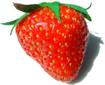 Yaourt au sirop de fraises et zeste de citron dans yaourt Fraise